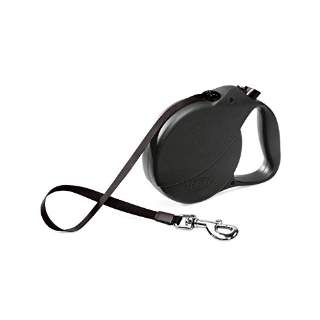 When is it okay to use a retractable leash with McCann Professional Dog Trainers
